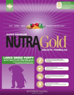 Nutra Gold Holistic Puppy Large Breed